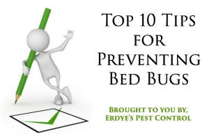 Prevent Bed Bugs Archives Erdye S Pest Control