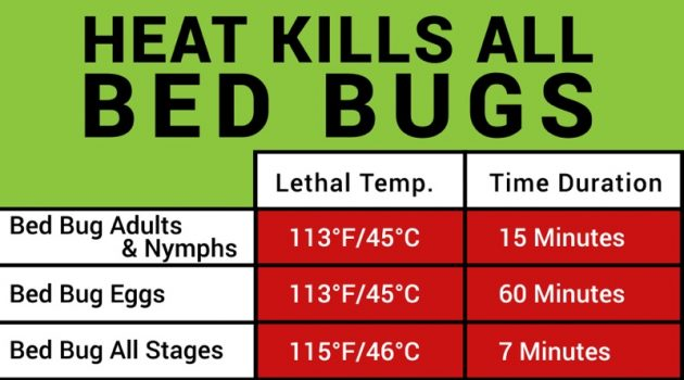 Image Result For Heat Treatment Bed Bugsa
