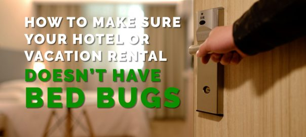 How To Get Rid Of Bed Bugs Archives Erdye S Pest Control