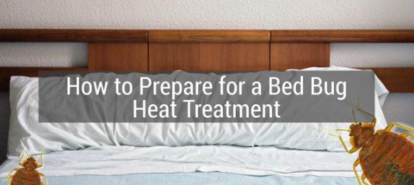 Bed Bug Heat Treatment