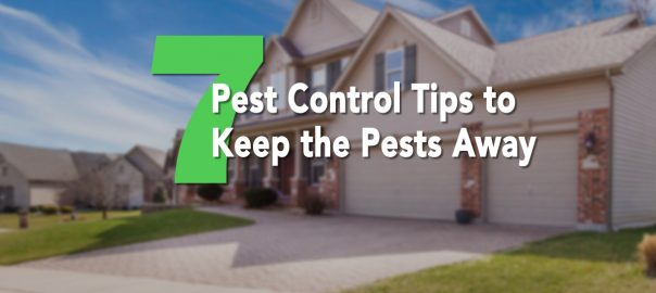 Keep the Pests Away